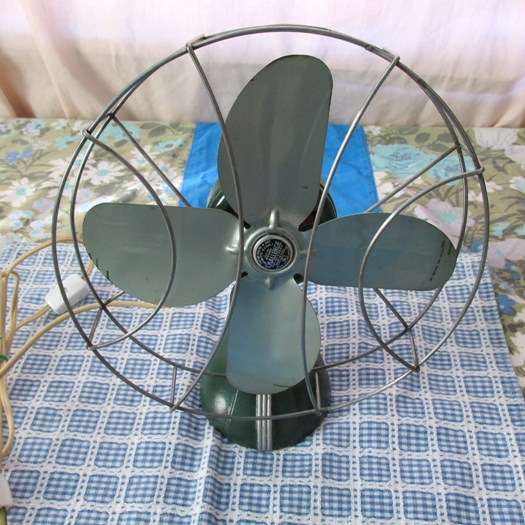 Wiskeylizard And Co Fans For Sale